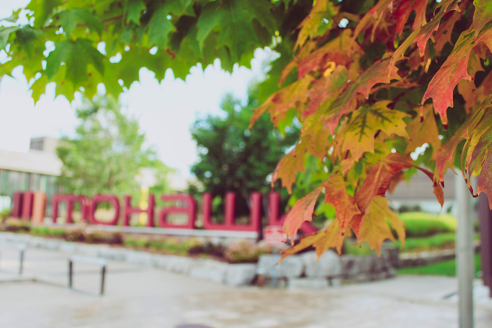 The Mohawk College sign with leaves in the forefront.