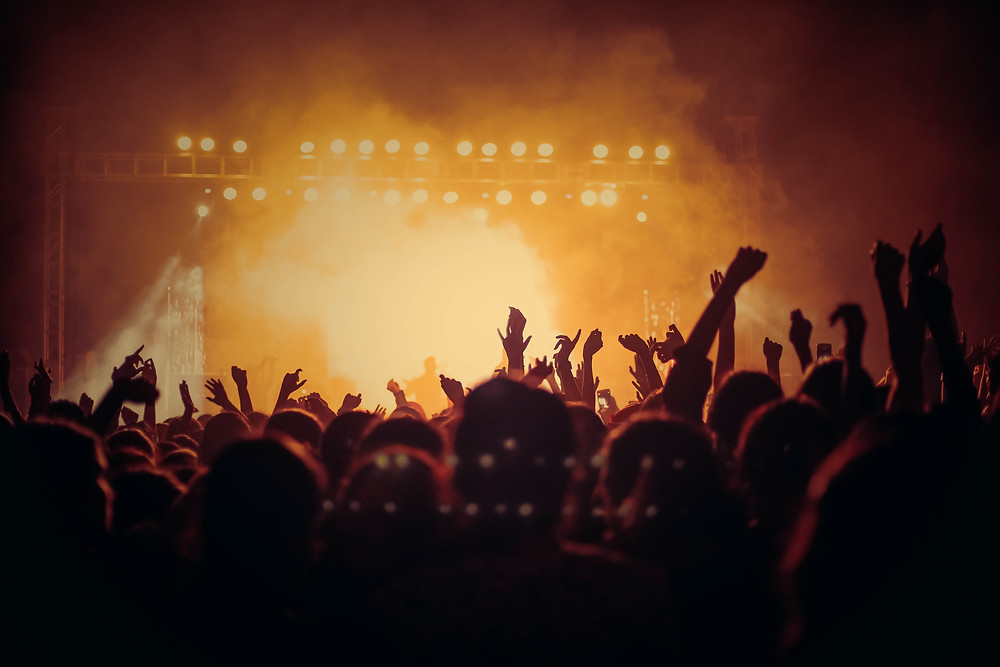 A group of people at a concert.