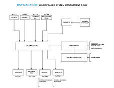 DSP MANAGER 2 WAY_page-0001.jpg