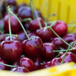 Postulación para la autorización de exportadoras de productos hortofrutícolas  a la Federación Rusa.