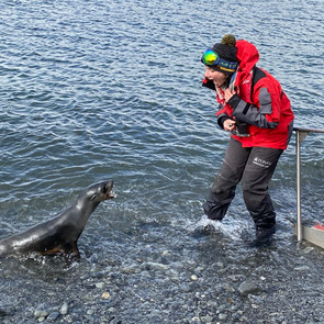Trying to communicate with fur seals in South Georgia.