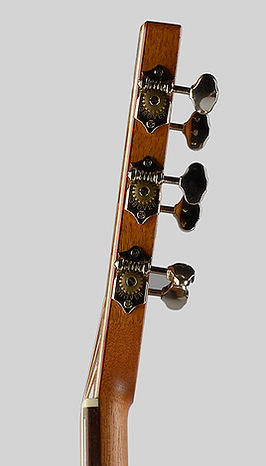 Oudtar-Thierry Andre Instruments - bowl-back acoustic guitar