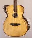 Raga-guitar