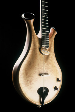 Zyra - Thierry Andre Instruments - hollow-body electric guitar w horns flutes acoustic-electric body