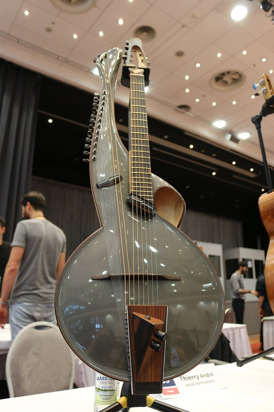 multi2_Thierry-Andre-instruments-hggs-2016.jpg
