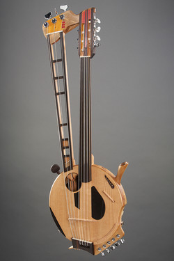 Cluster - Thierry Andre Instruments - nylon harp guitar w / gourd body and sub-bass