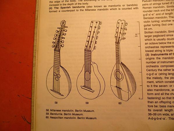 mandoline8.jpg