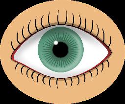 on y voir un oeil avec iris de couleur verte et des cils noirs qui délimitent l'oeil en haut et en bas