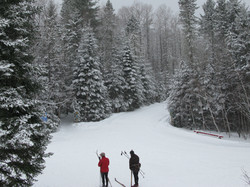 Cross-country ski & Snowshoe