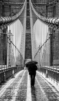 Solo Brooklyn Bridge 2