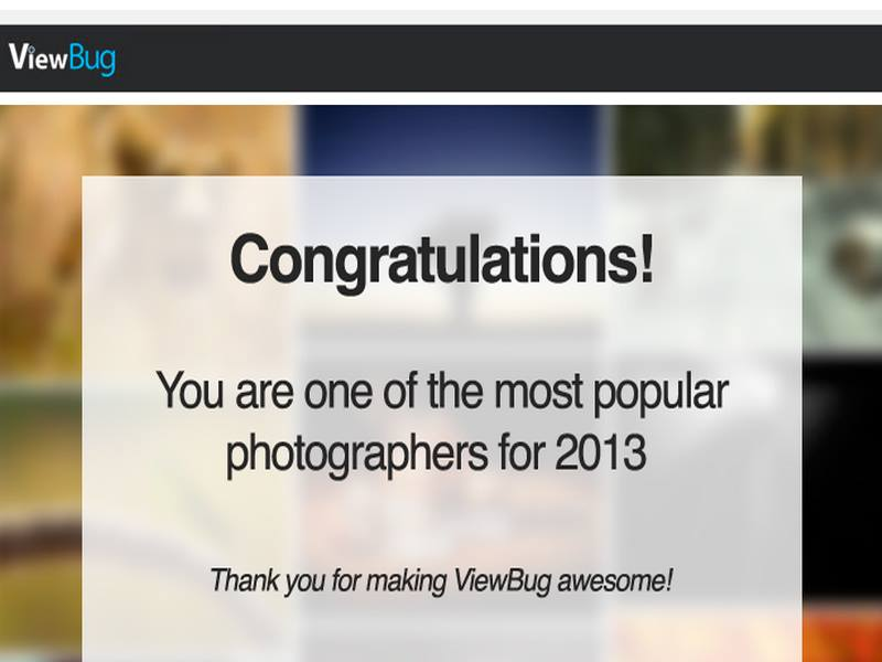 2013 Most Popular Photographer