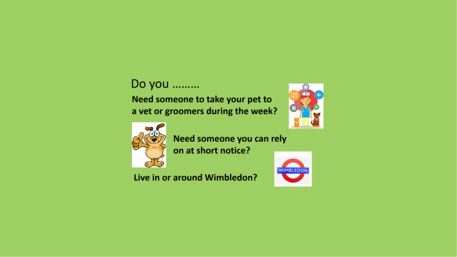 Take pet to vet or groomers