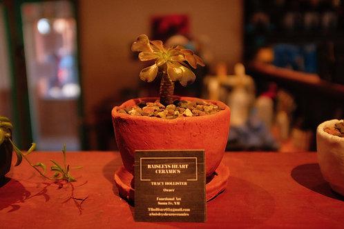 Handmade Ceramic Pots by Tracy