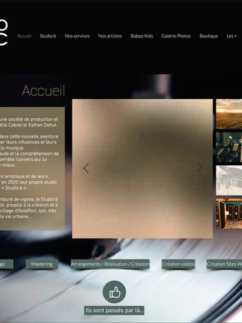 Capture d'écran 2020-08-20 à 12.36.35.pn