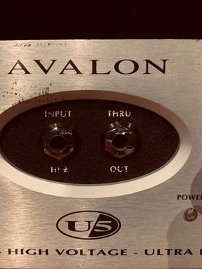 Avalon / Préampli à lampe / Avalon U5.JPG
