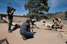 FFTW Crew @ Wild Spirit Wolf Sanctuary