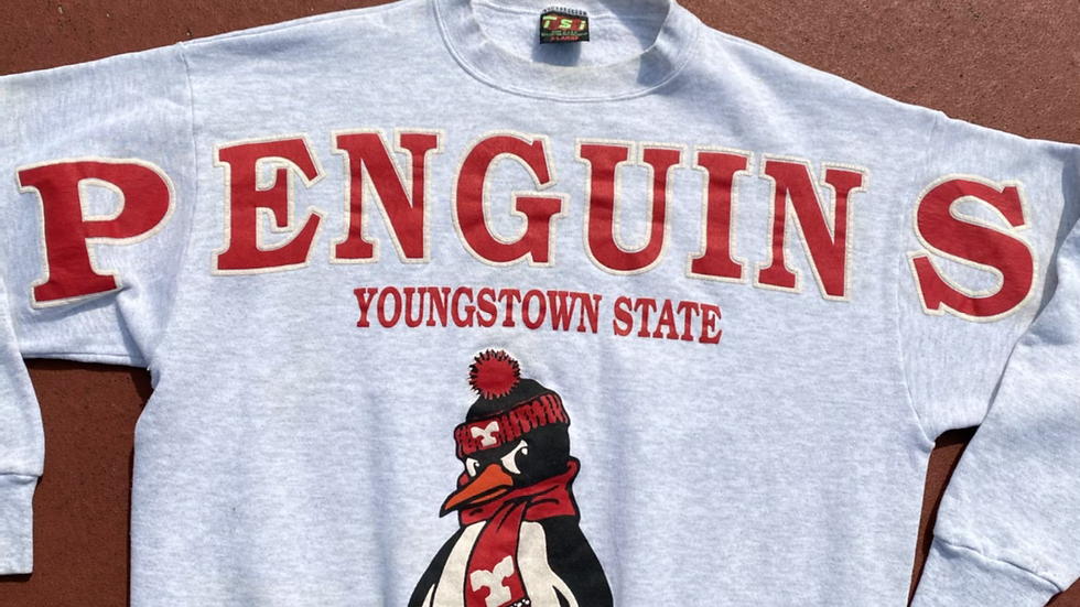 Youngstown State Spell Out Crewneck