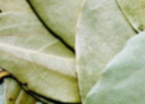 bay-leaf-1049543_960_720.jpg