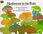 mushroom in the rain.jpg