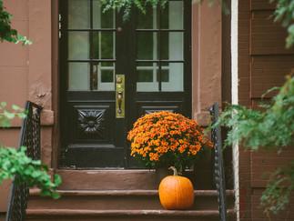 Get Your Fall Fun on in NYC