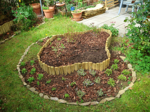 Wildlife Garden Project: Transformation Completed! For now...
