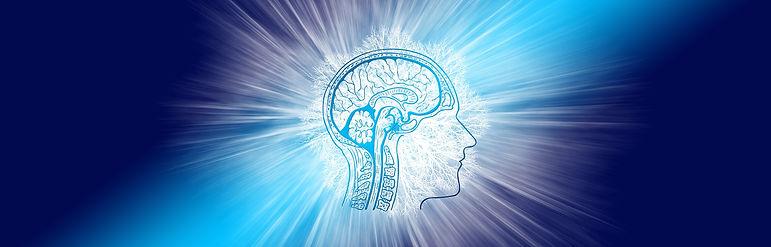 brain mind.jpg
