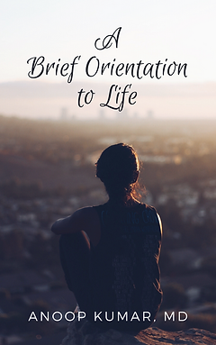 a brief orientation to life-cover.png