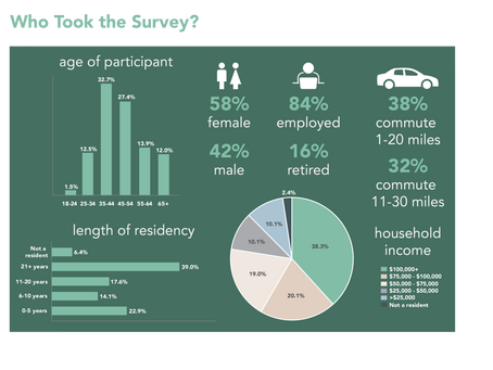 Online Survey Summary