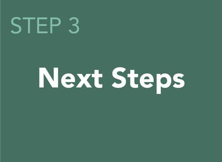Virtual Public Meeting: Step Three