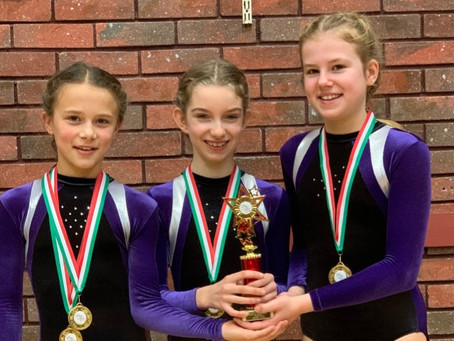 Trampolinists jump their way to victory