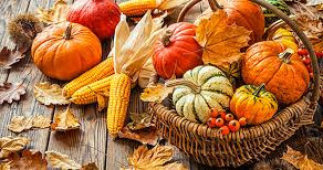 St James and St Michaels churches Harvest 2021 - two exciting events