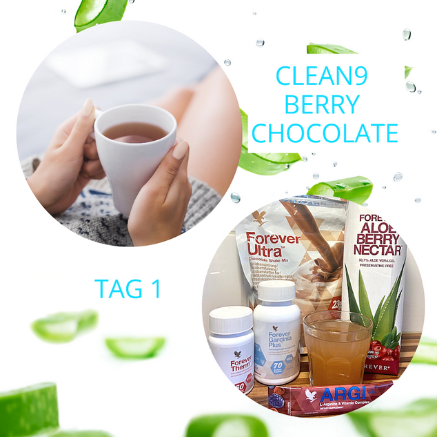 TAG 1: CLEAN 9