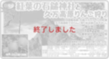 石鎚りんご宇和島.jpg
