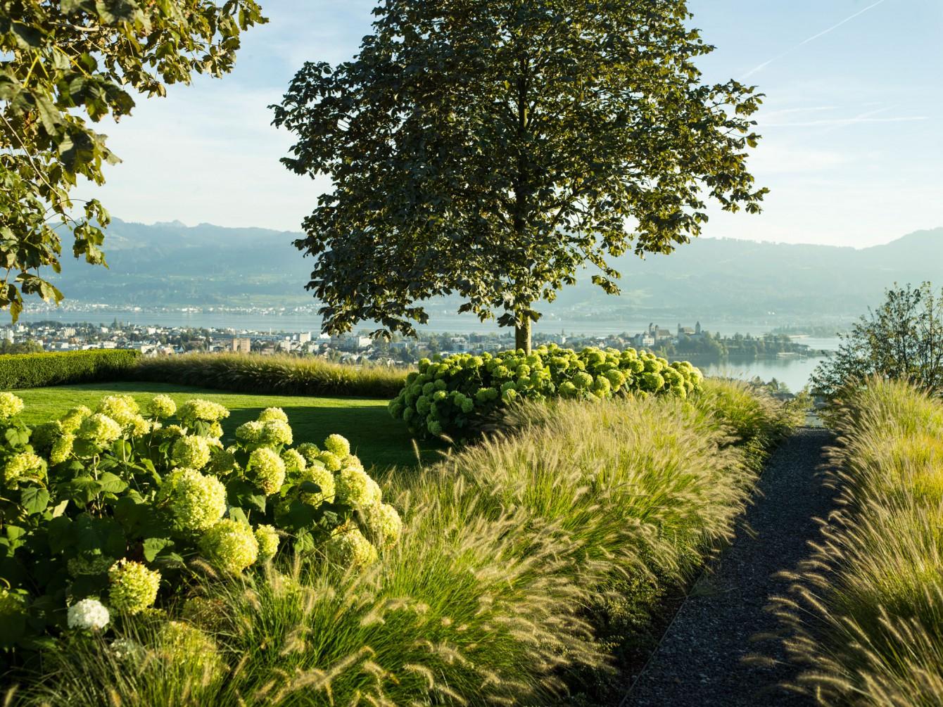 Enea Landscape Zurich