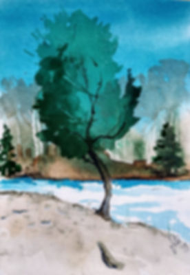 Jill Guth River Trees.jpeg