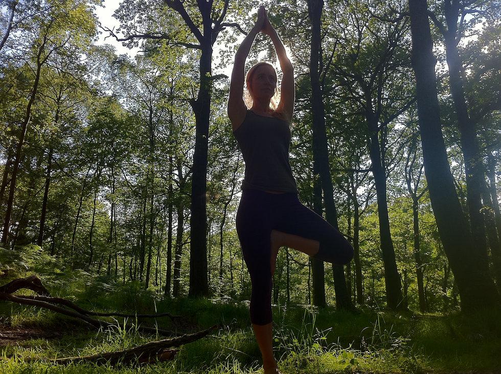 sep yoga trees 4 (original)-1000.jpg