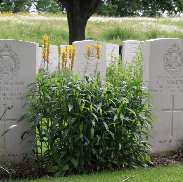 war graves and their stories