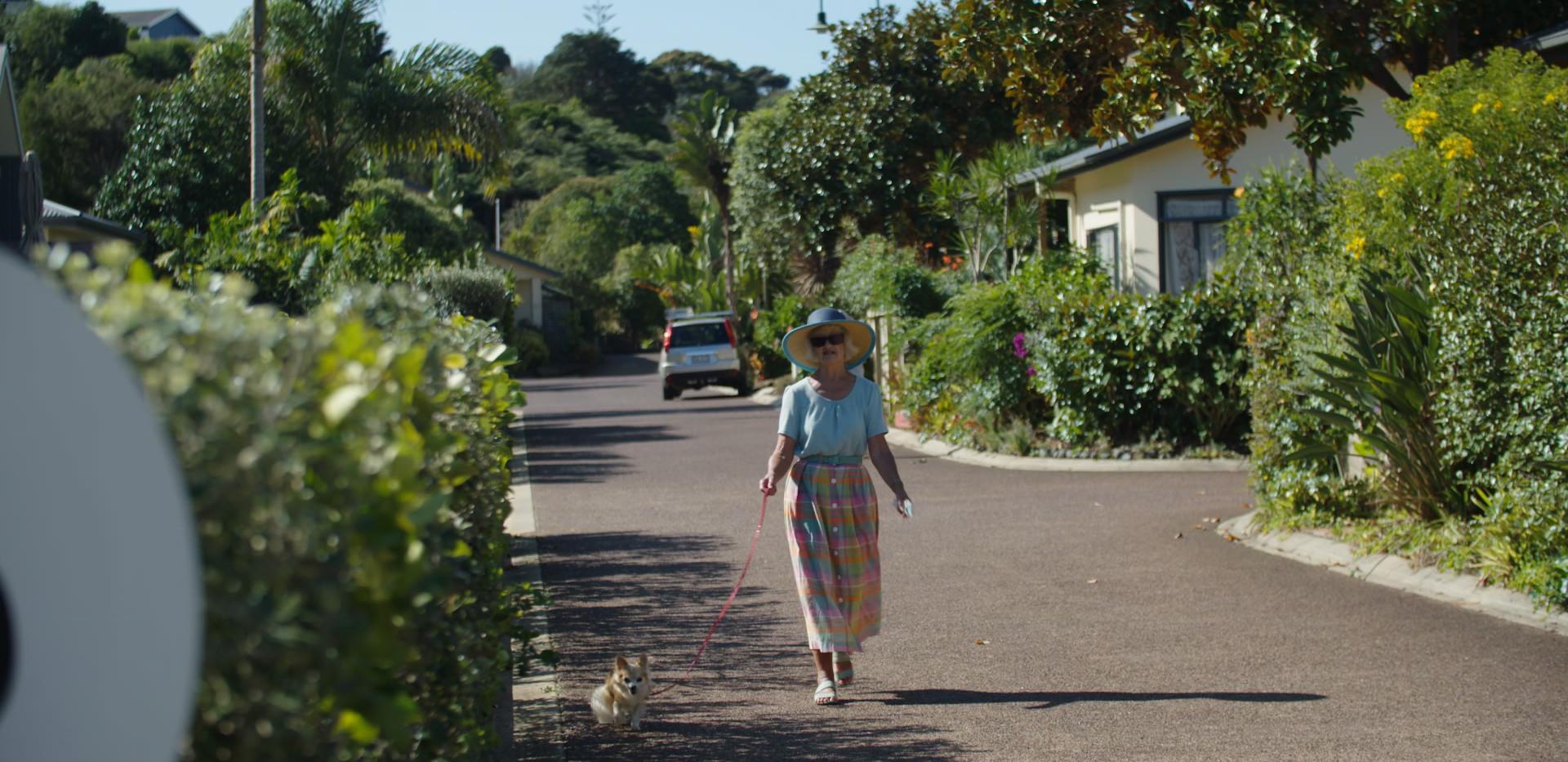 Walking Dog Waiheke Retirement Village