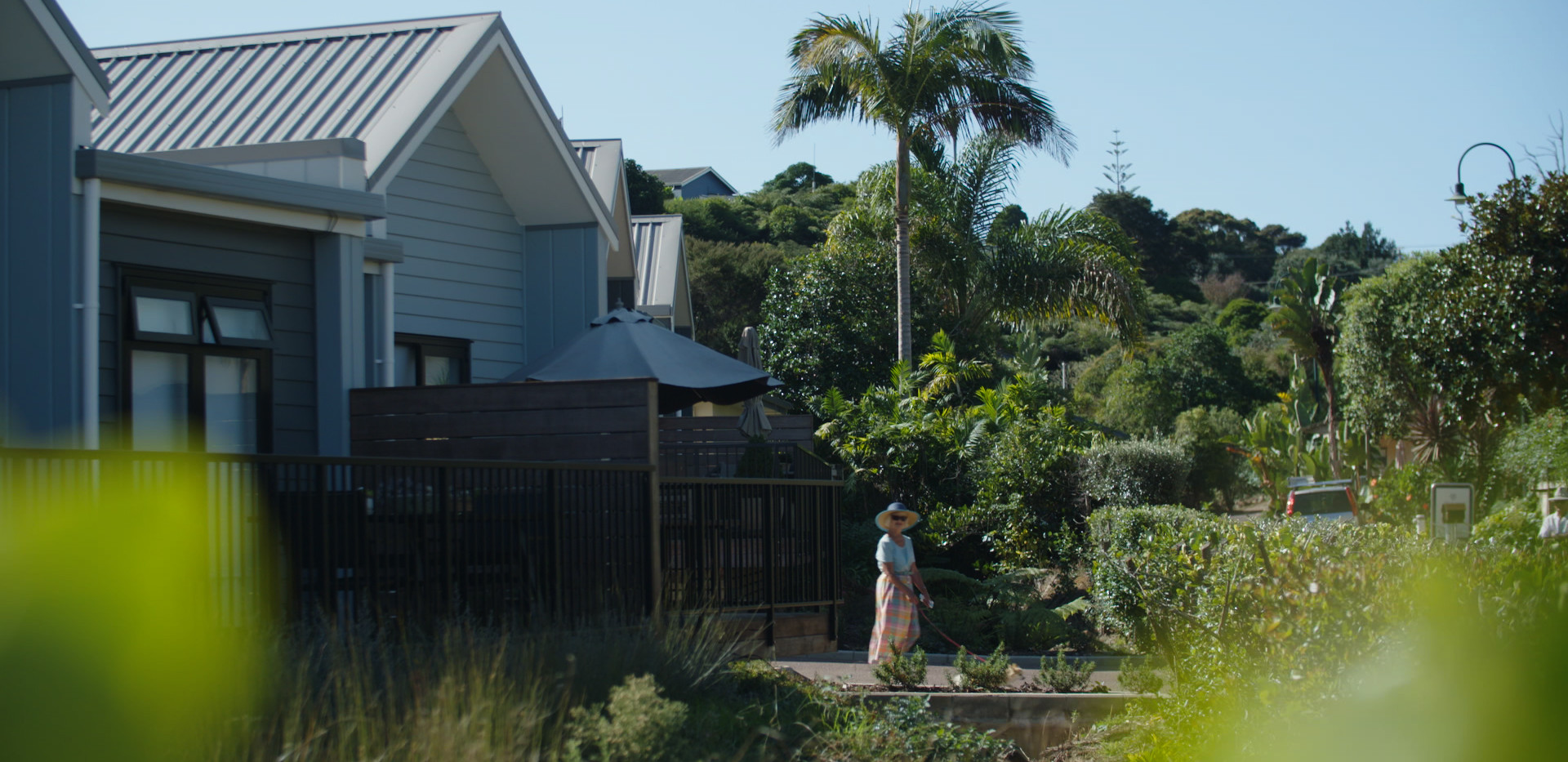 Walking Dog New Villas Waiheke Retirement Village