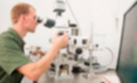 MOKE Microscope Evico_Kozlov.jpg