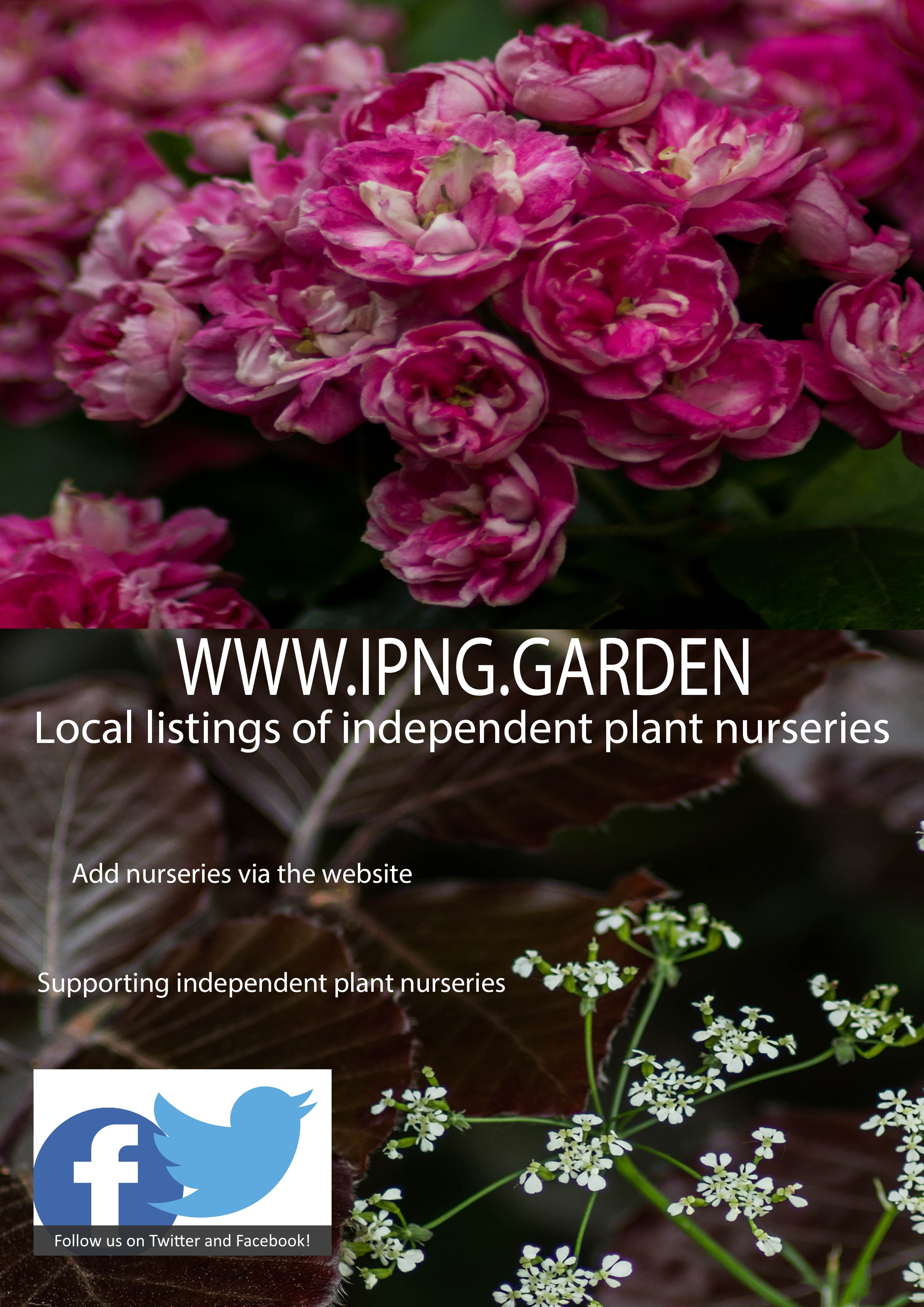 INDEPENDENT PLANT NURSERY GUIDE