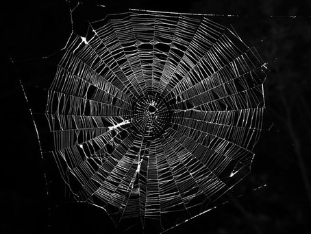 Computing in Context week 2: Sticky Web