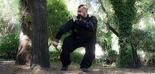 Angelos Fasois Kung Fu