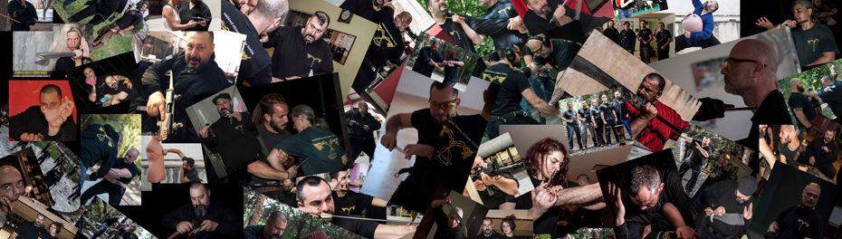 Interview collage.jpg