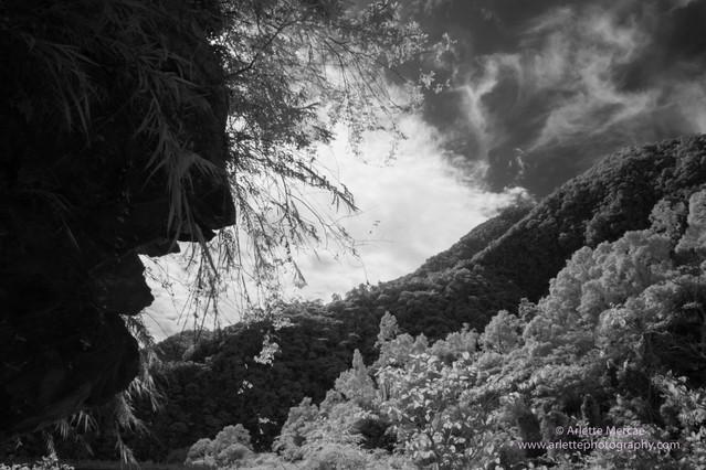 Taiwan Mountains 12