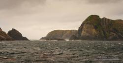 Maatsuyker Island - 16