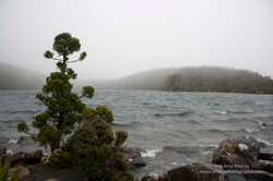 Lake Osborne -1