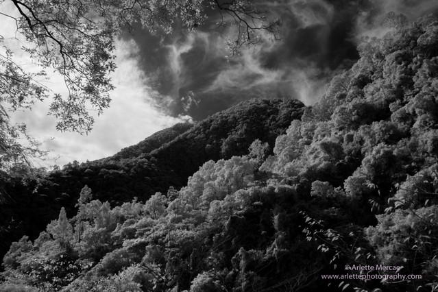 Taiwan Mountain 14