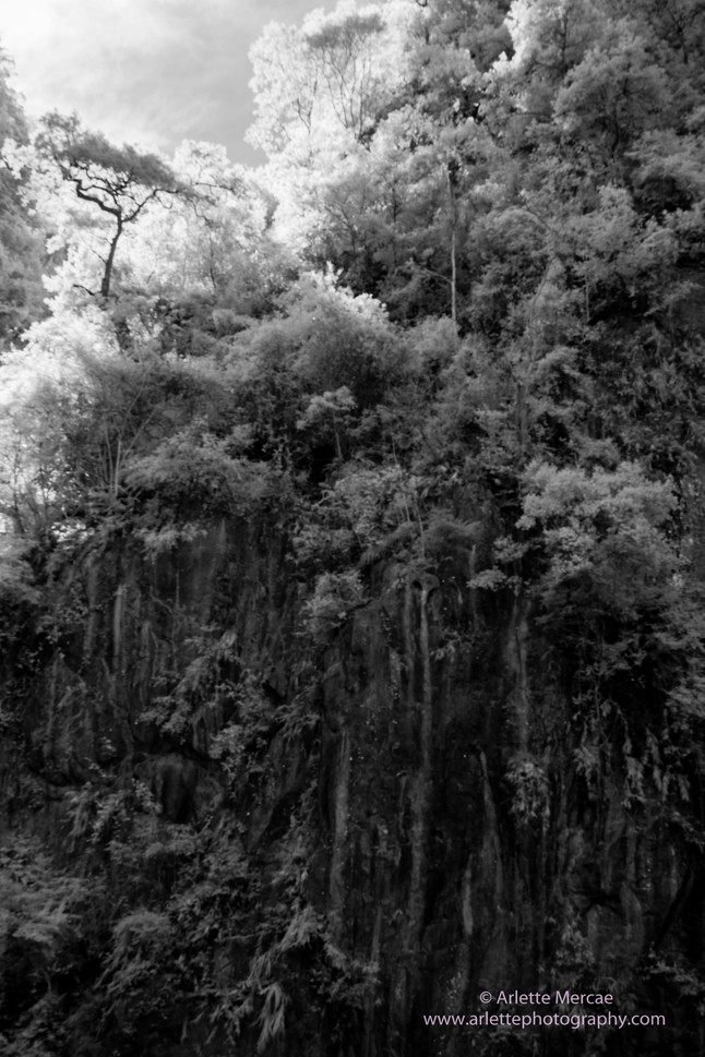Taiwan Mountains 8