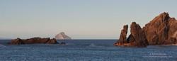 Maatsuyker Island - 3